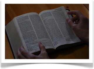 Den dagliga bibelläsningen