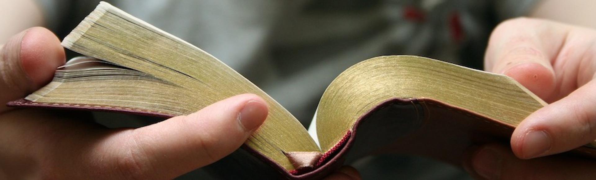 Vill du läsa Bibeln?